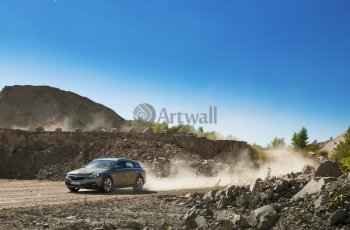 Opel Insignia Country Tourer (арт. am3900),